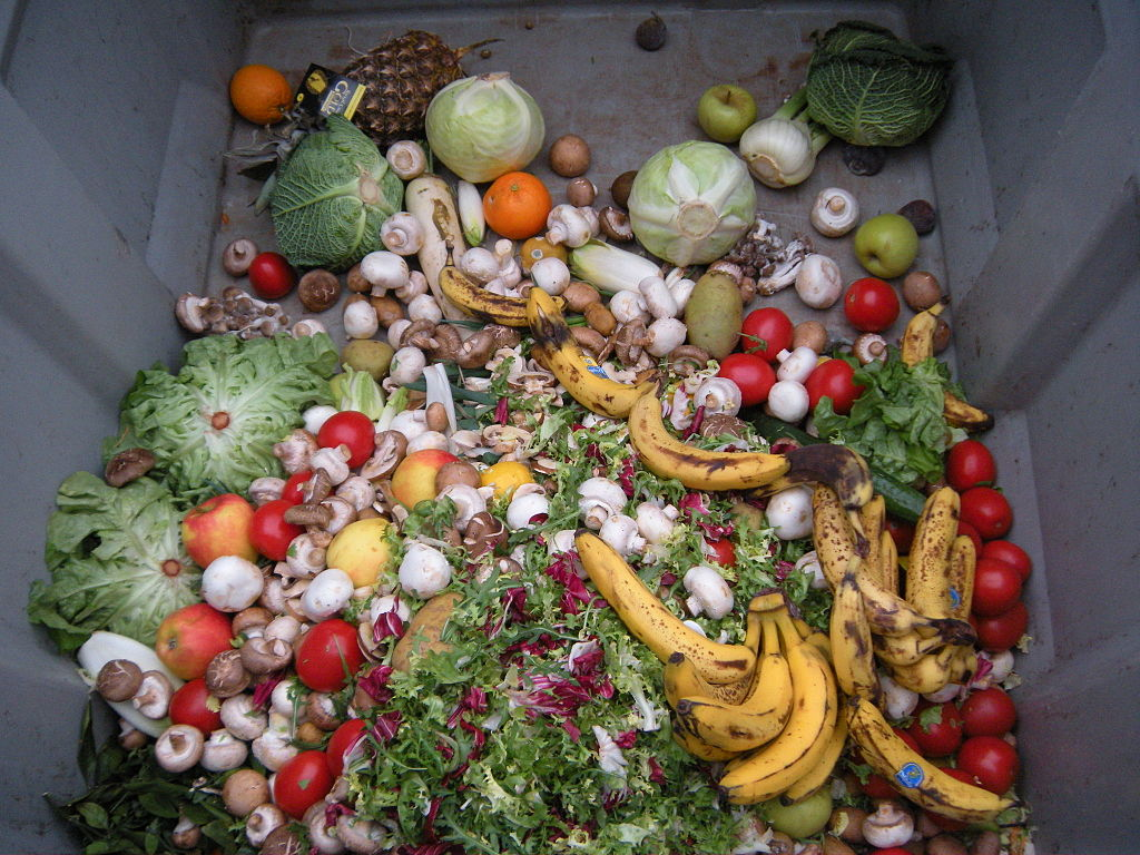 Lots of vegetables in a skip, wasted.