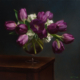 Purple Tulips, 14 x 16 2007