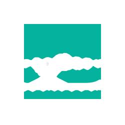 Ps Property Advisory logo