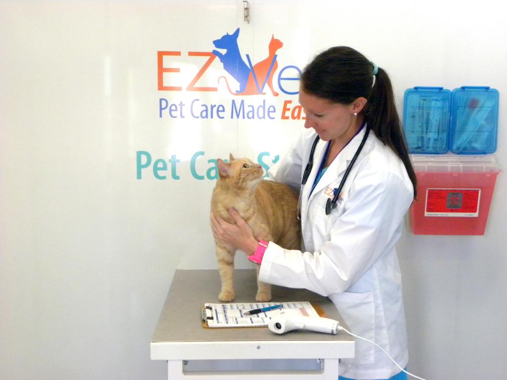 EZ Vet_ veterinarian