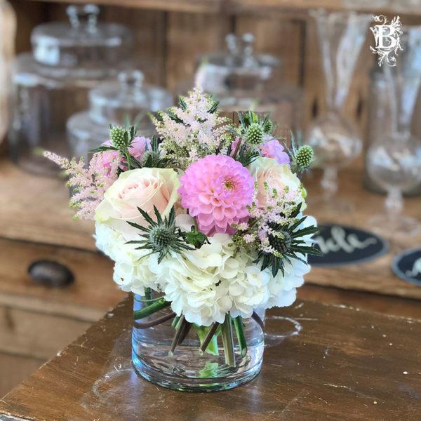 Summer Rose Dahlia Bulbs