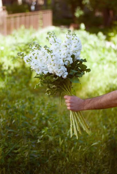 flower arrangements in Pound Ridge, NY