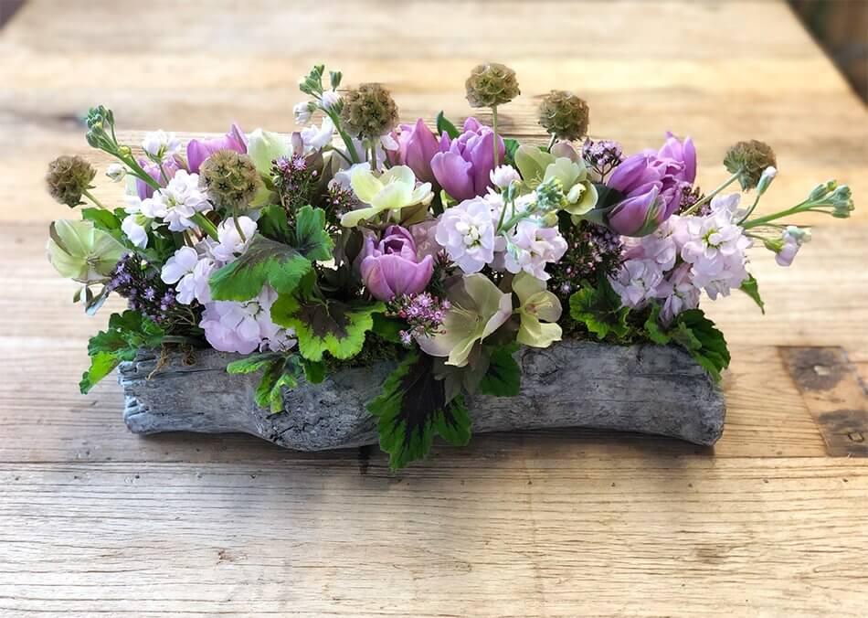 Purple Flowers in a Wooden Log