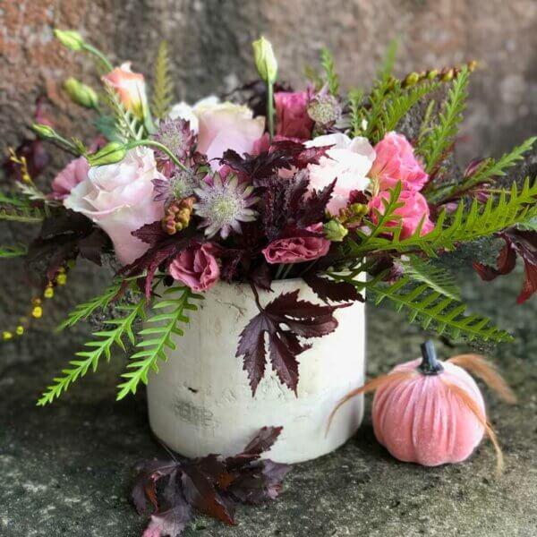 Fall Low Garden Flowers