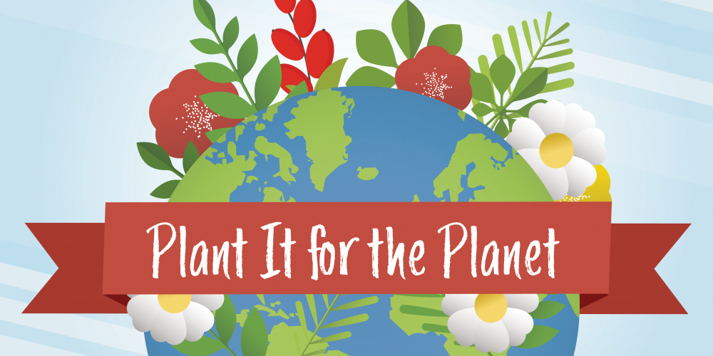 Plant It For The Planet @ Dennis Johnston Park | Spring | Texas | United States