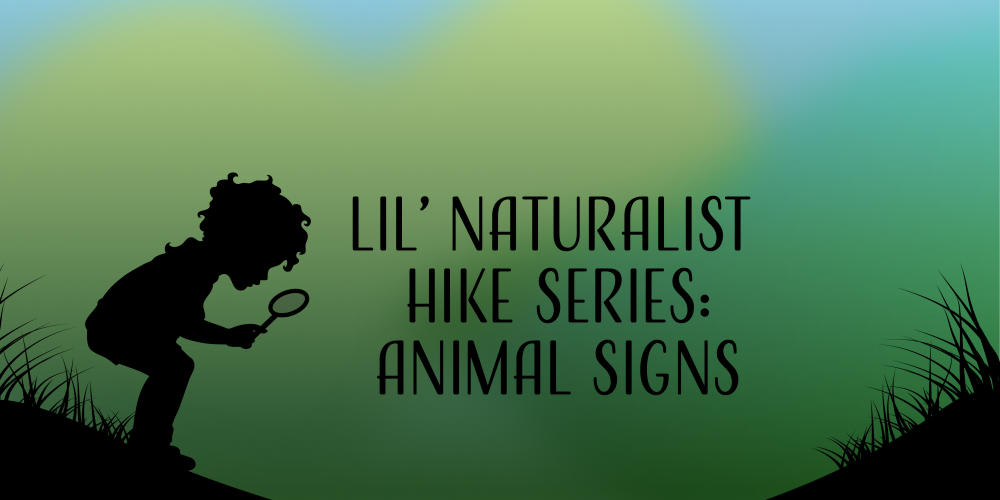 Lil' Naturalist Hike series : Animals Signs @ Pundt Park | Spring | Texas | United States