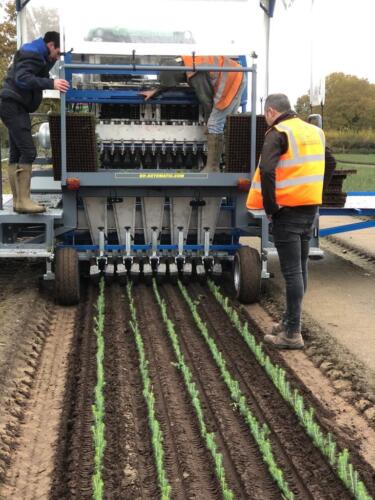 tts-multi-row-plantmachine-2