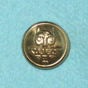 Pattern #14226 – CUBS BSA w/ wolf head (Jr Boy Scouts of America)