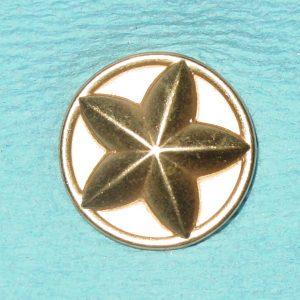 Pattern #80305 – Starfish