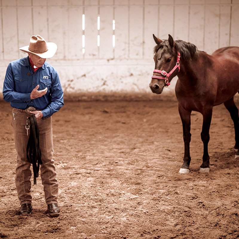 Monty Roberts the moment of Join-Up with a horse