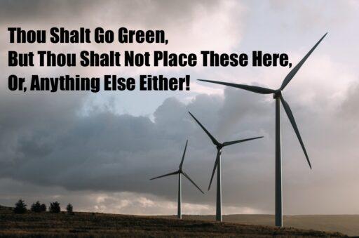 leisure class environmentalists