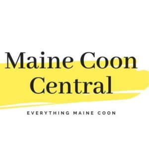 Logo for Maine Coon Central
