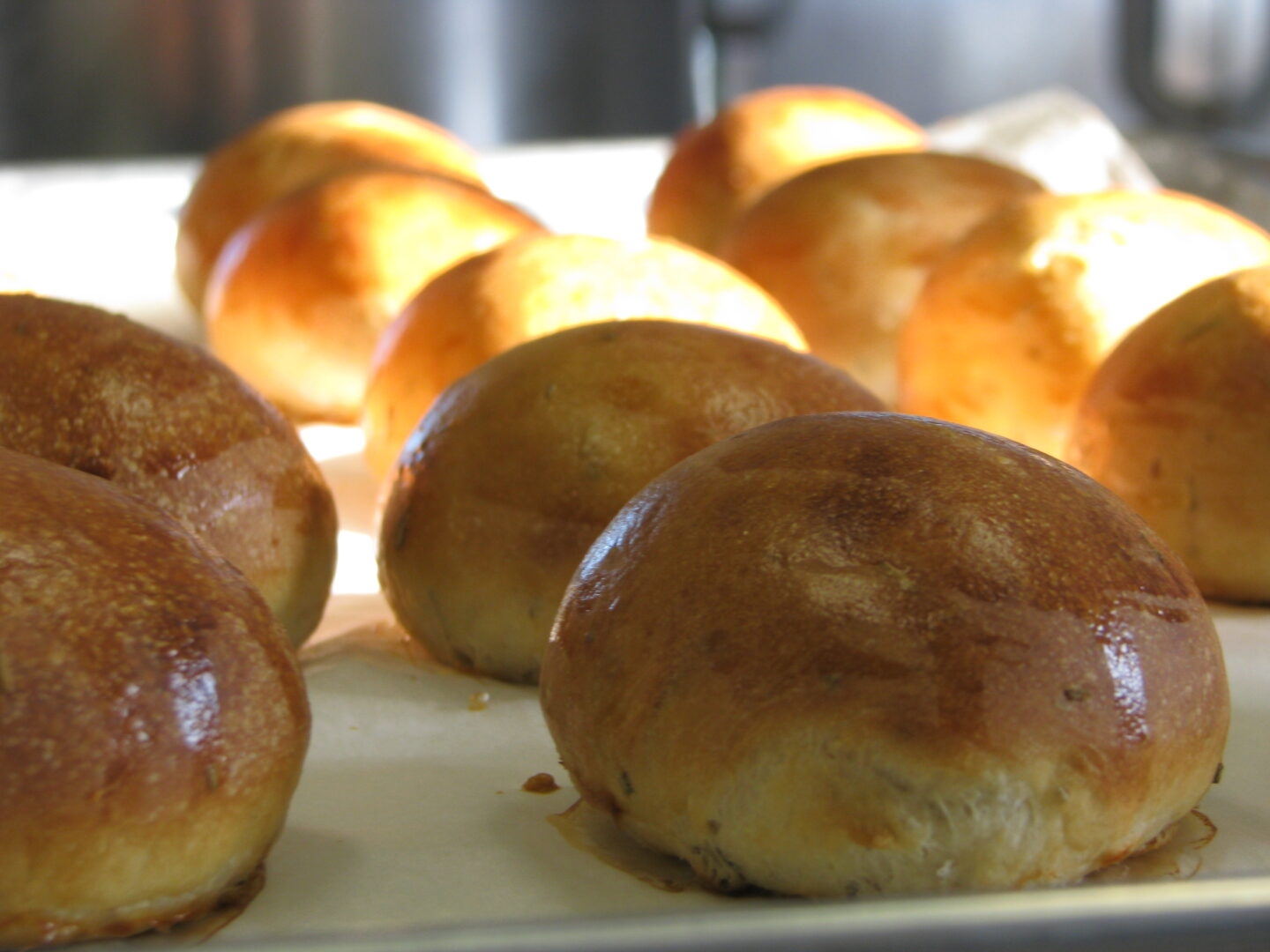 Our olive oil potato rosemary dinner rolls, you can smell the fresh rosemary and taste the tender texture of these rolls