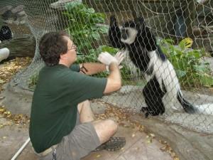 Zoo-SNV10024