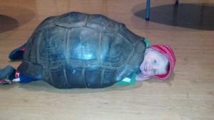 Zoo-melinda's-pics-of-kid-in-turtle-shell