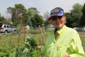 Susan McCaster, a retired kindergarten teacher, helps out the Rockford Lions with their double plot in the Rockford Community Gardens. The gardens are located behind the RPS Administrative Building on Main Street.