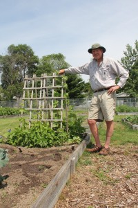 """Ted Williams, pictured, or his gardening partner Fred Chlla, are in the Gardens nearly every day. Williams was there on Friday, July 3, and again on Monday, July 6. """"i just had to stop in and check on my babies,"""" he said."""
