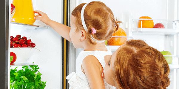 refrigerator repair green cove springs
