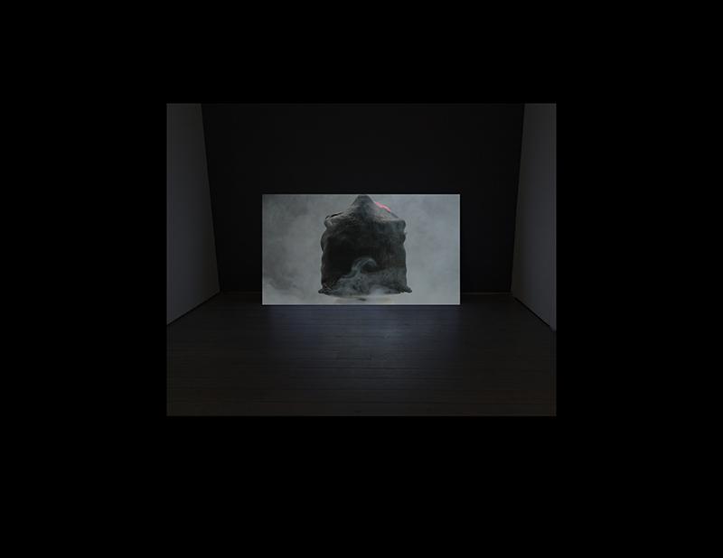 Pursuit, Plunder & Fleece, 2011-15, single channel video projection, 12:30:00.