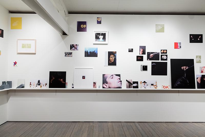 Pursuit, Plunder & Fleece, Installation view. 2015.