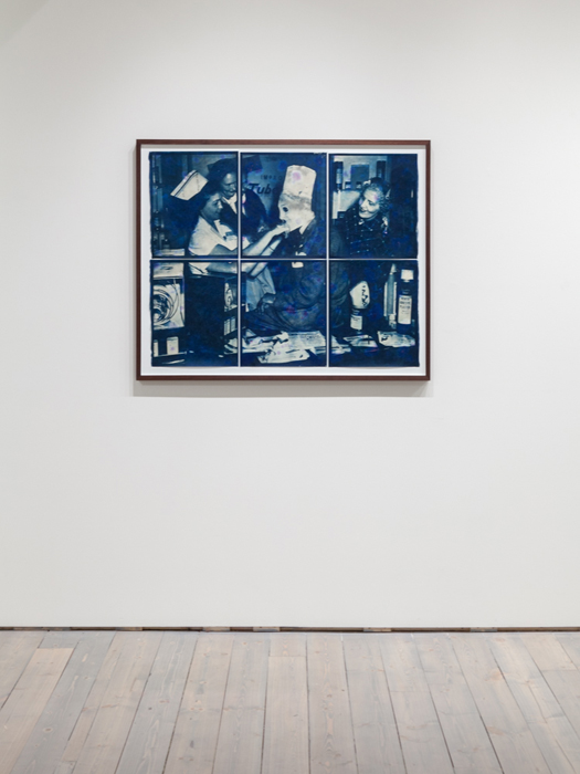 Cyanotype, lavender, black current, Atlantic sea salt, 2015 38.5 x 31 inches