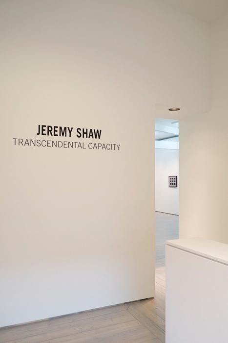 JEREMY SHAW, TRANSCENDENTAL CAPACITY