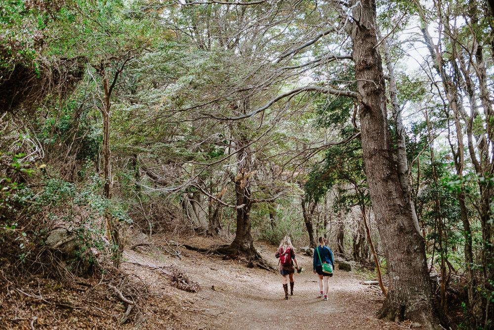 casamiento en el bosque bariloche