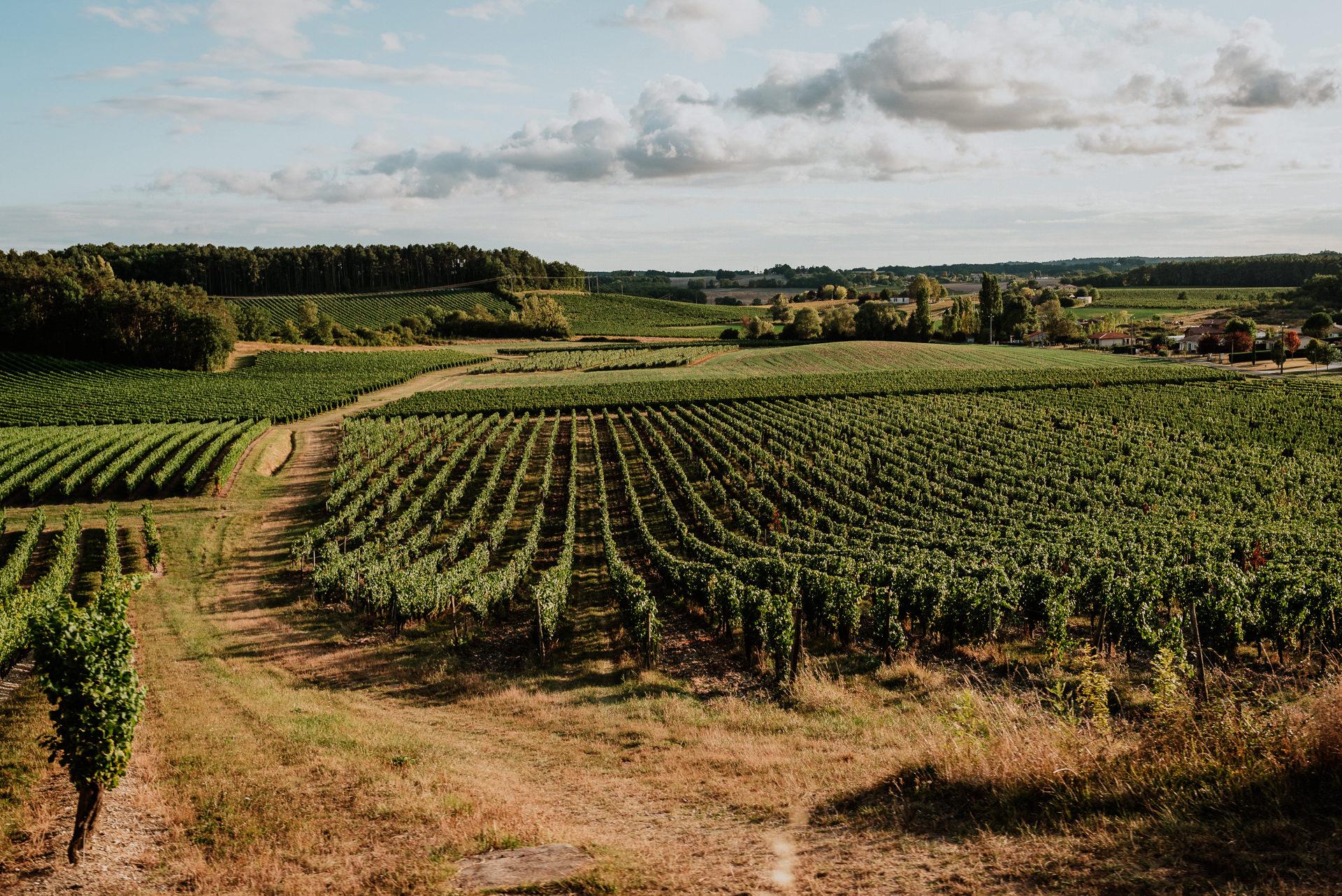 Castle Vineyard Venue Europe