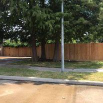 cedar privacy fence sugar land