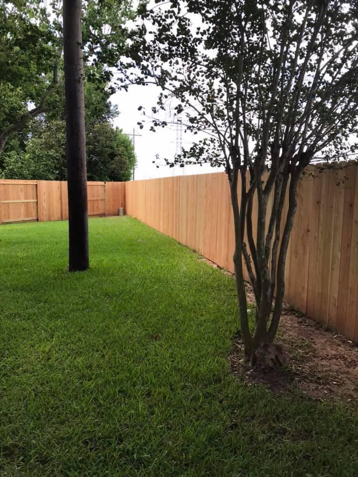 6 foot cedar privacy fence sugar land