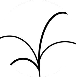 Leaf Logo White & Black