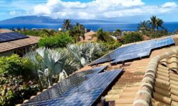 Professional island solar panel cleanings
