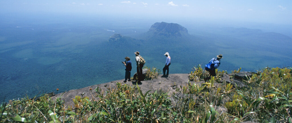 View from a half mile up on Autana tepui