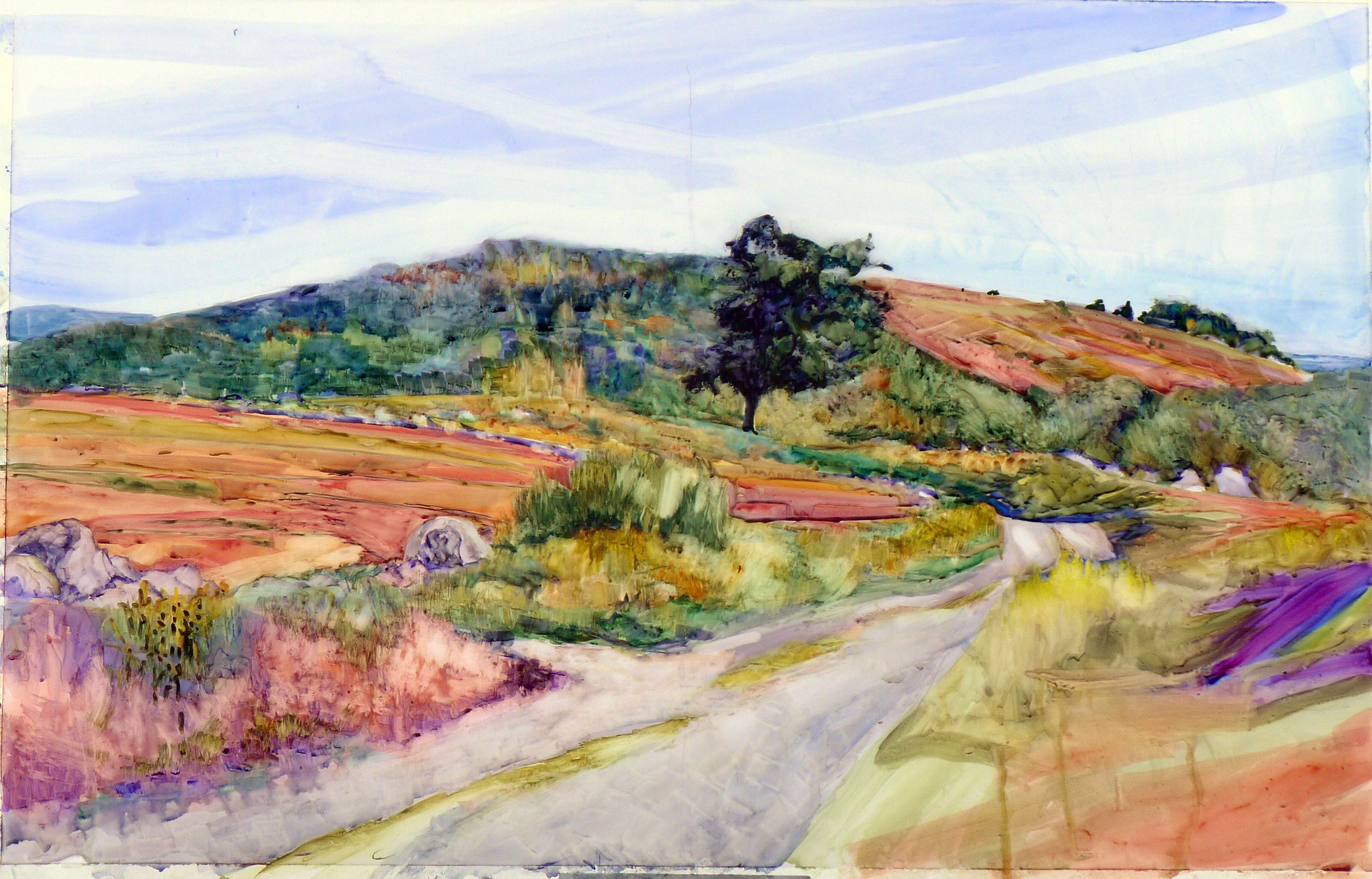"""Clary Hill Blueberry Barrens,"" watercolor full sheet, $3985 framed."