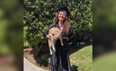 GCCA employee and alum wears graduation cap and gown while holding a cat