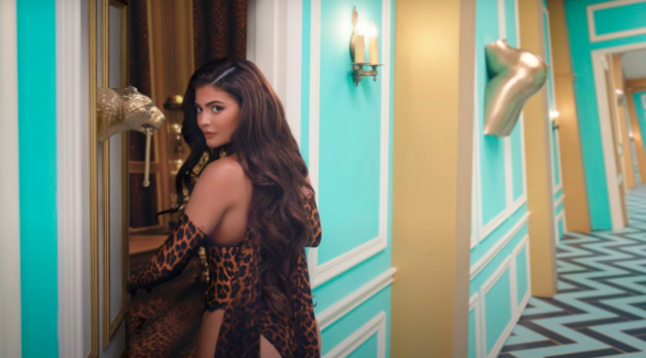 """There Is Now a Petition To Remove Kylie Jenner From The """"WAP"""" Video"""
