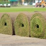 Big Roll Sod Installation