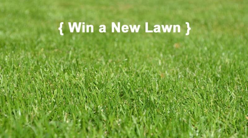Win A New Lawn