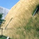Purus EcoRaster Green Roof