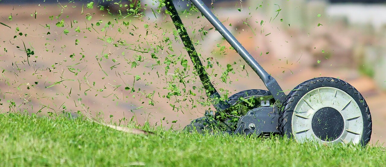 Mowing Your Lawn for its Beauty or for Your Health