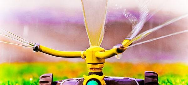 lawn sprinkler - bc water ban