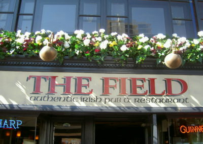 TheField_03