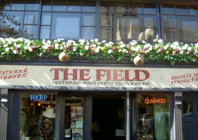 TheField_04