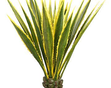 Faux Plants San Diego