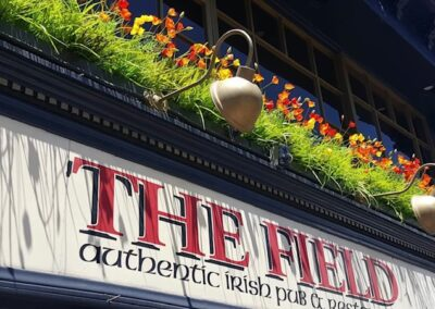 The Field 2