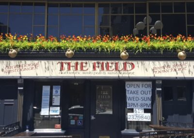 The Field 4