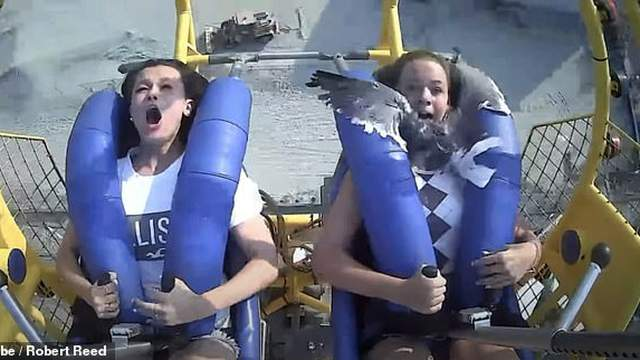 Shocking Video! Teen Smacked in Face by Bird While on Amusement Park Ride