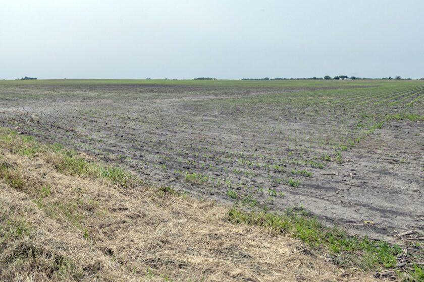 Blocking China's Purchase of American Farmland