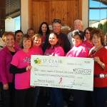 Cancer Support check presentation 2014