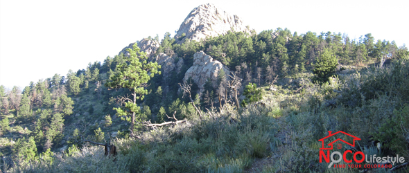 Horsetooth Rock via Audra Culver Trail